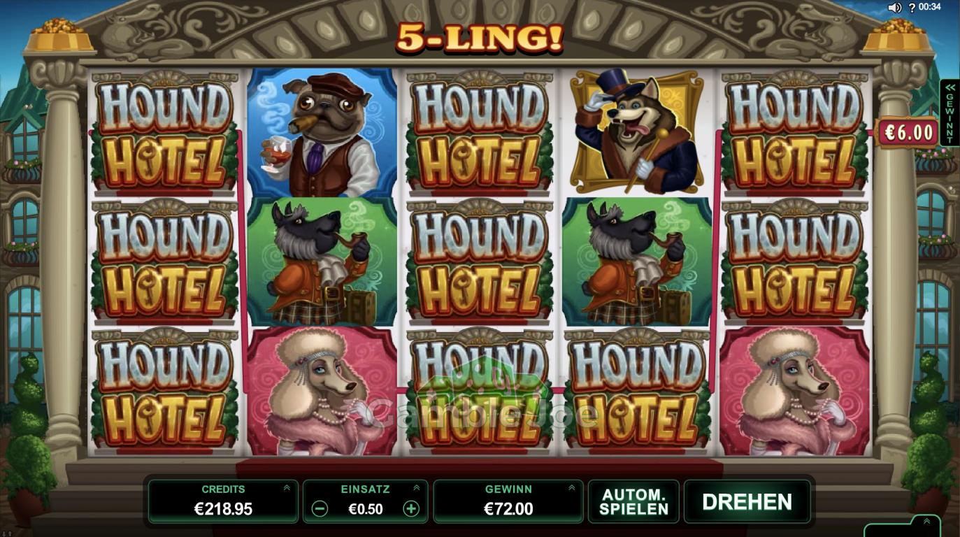 Hound Hotel Gewinnbild von Henry