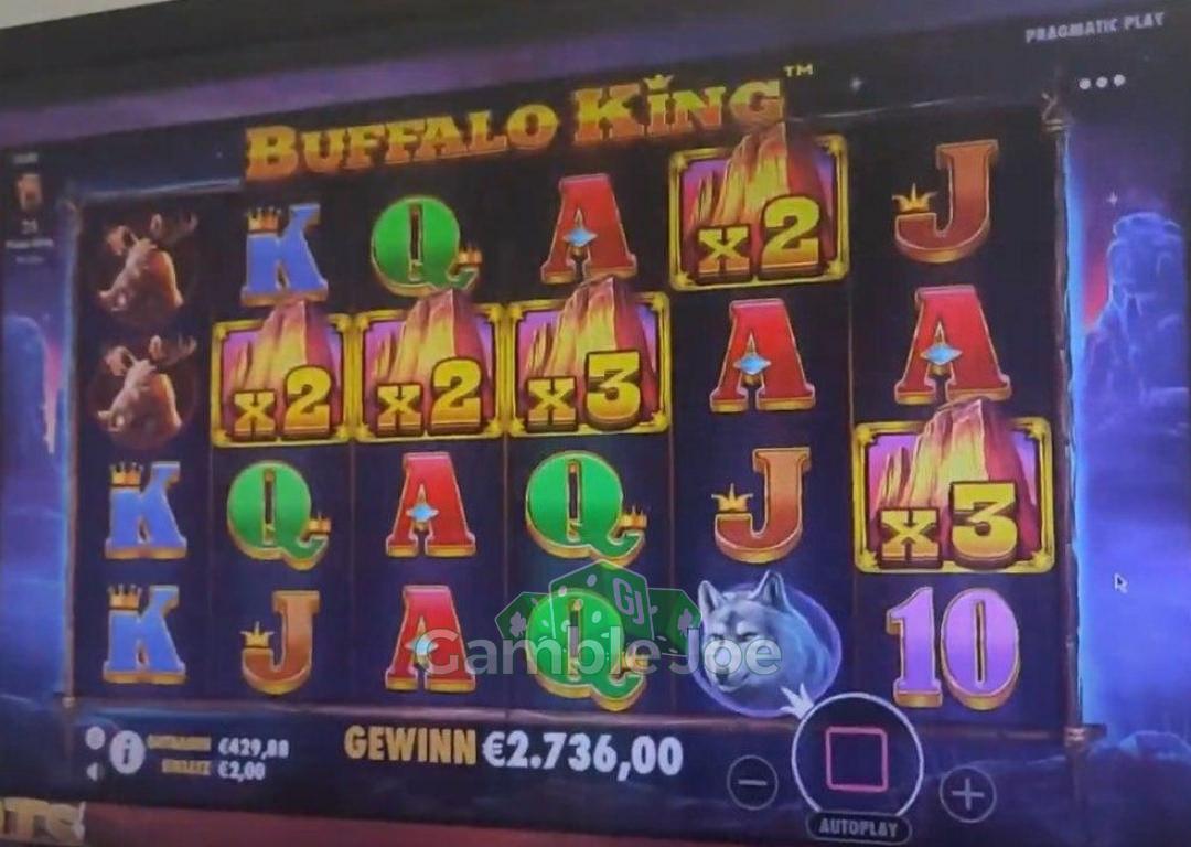 Buffalo King Gewinnbild von sippi