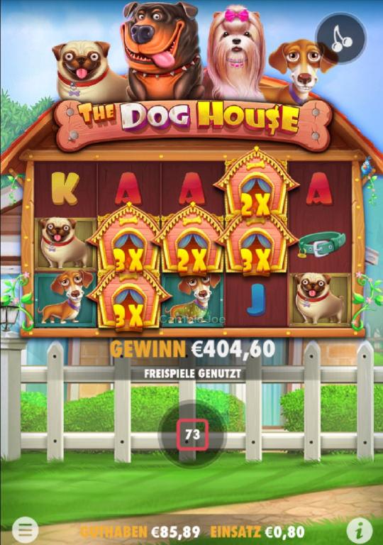 The Dog House Gewinnbild von DerHamburger87