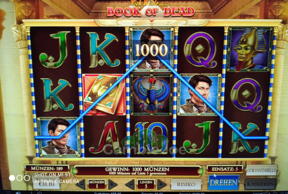 Book of Dead Gewinnbild von needle34