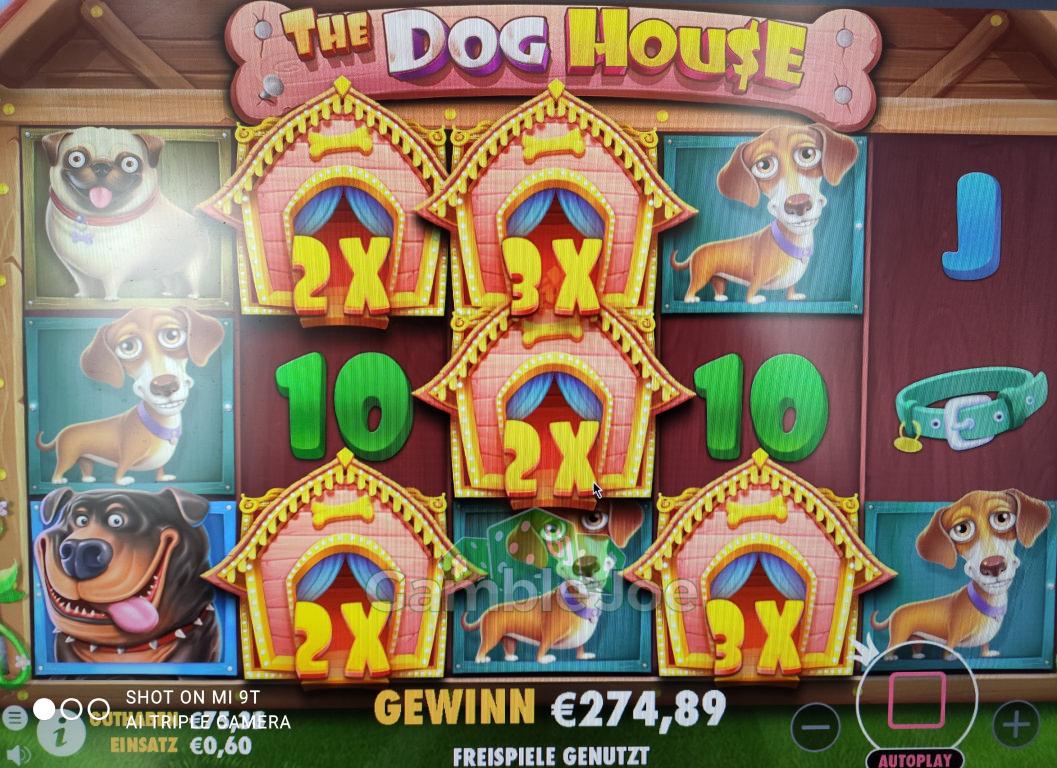 The Dog House Gewinnbild von needle34