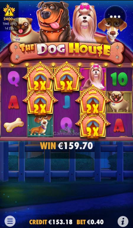 The Dog House Gewinnbild von Starksche