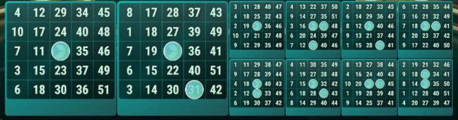 Die Bingokarten bei Mega Ball
