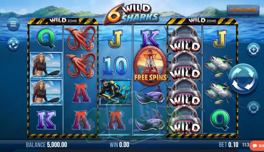 6 Wild Sharks Titelbild