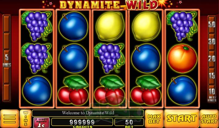 Dynamite Wild Titelbild
