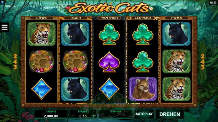Exotic Cats Titelbild