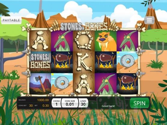 Stones & Bones Titelbild
