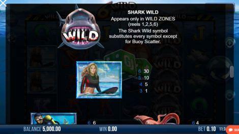 Shark Wild