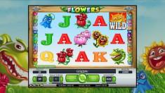 Flowers Vorschaubild