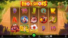 Hot Shots Vorschaubild