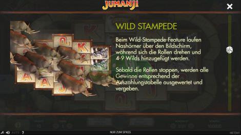 Wild Stampede