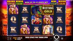 Mustang Gold Vorschaubild