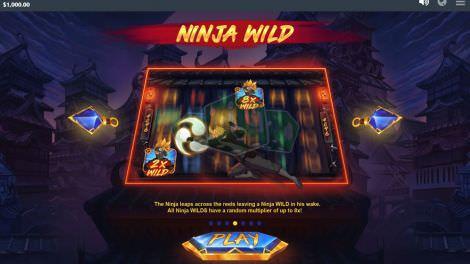Ninja Wild