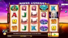 Silver Lioness 4X Vorschaubild