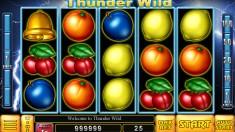 Thunder Wild Vorschaubild