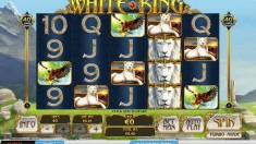 White King Vorschaubild