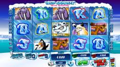 Wild Gambler 2 Vorschaubild