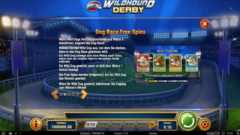 Dog Race Free Spins