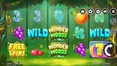 Wonder Woods Vorschaubild
