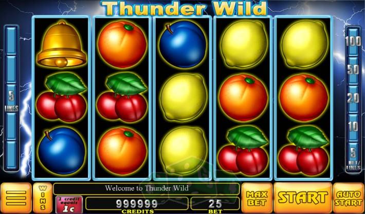Thunder Wild Titelbild