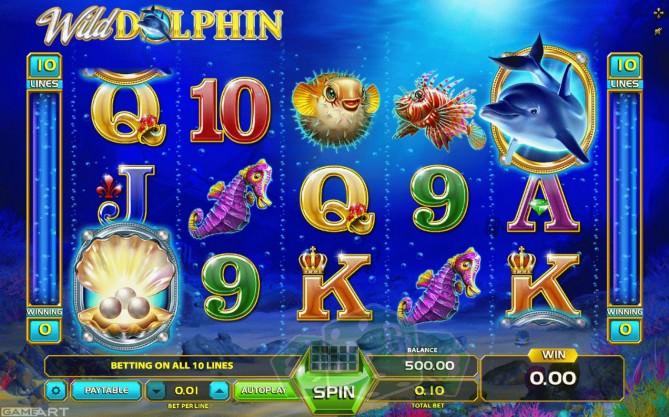 Wild Dolphin Titelbild