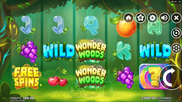 Wonder Woods Titelbild