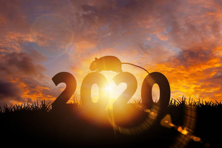 Neues Jahr, neues Glück: Top- & Flop-Slots von 2019 – im Jahr 2020 neu testen?